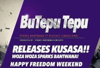 Sparks Bantwana feat. Peaches - BuTepu Tepu (Afro House) 2017