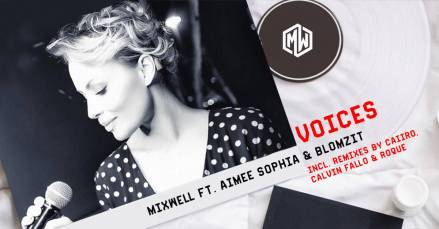 Fistaz Mixwell feat. Aimee Sophia - Voices (Caiiro's NYC Remix) 2017