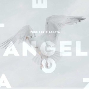 Pzee Boy x Barata - Angel (Original Mix)