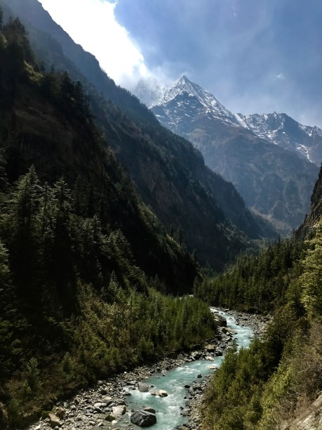 Rugged pine-filled Marsayangdi Valley near Bhratang