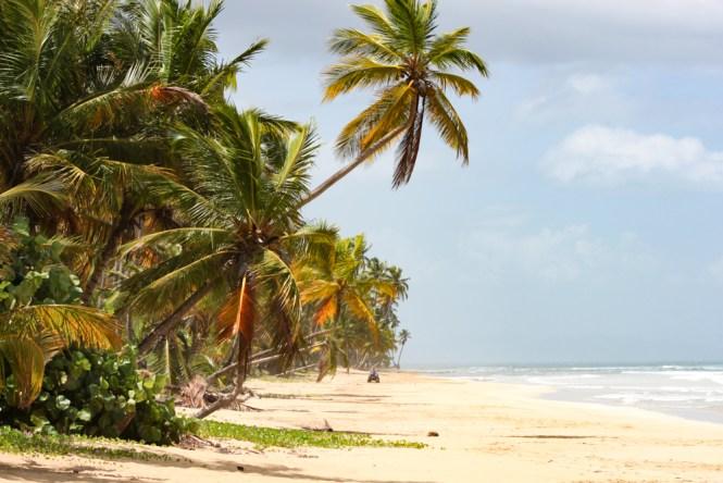 playa coson visiter las terrenas en république dominicaine