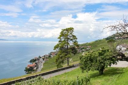 Visite des vignes visiter week end Suisse Romande