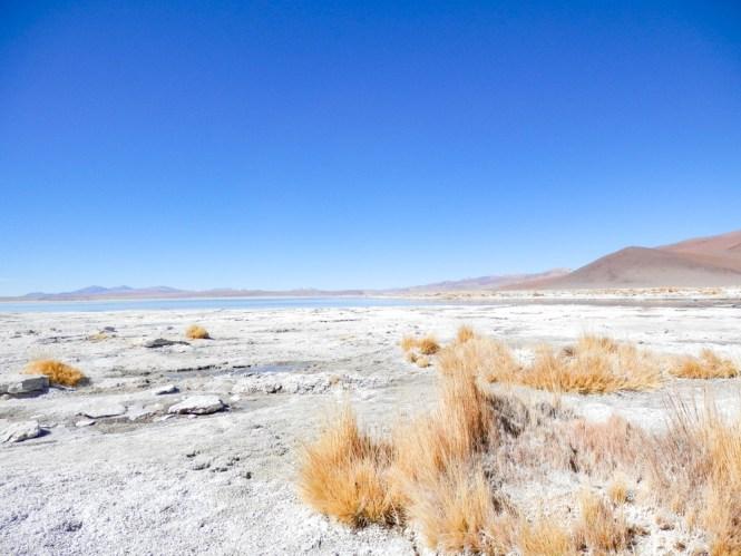 Sources d'eaux chaudes locales de Chalviri Salar d'Uyuni