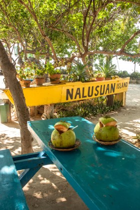 cebu nalusuan coco-Top 5 des incontournables aux Philippines