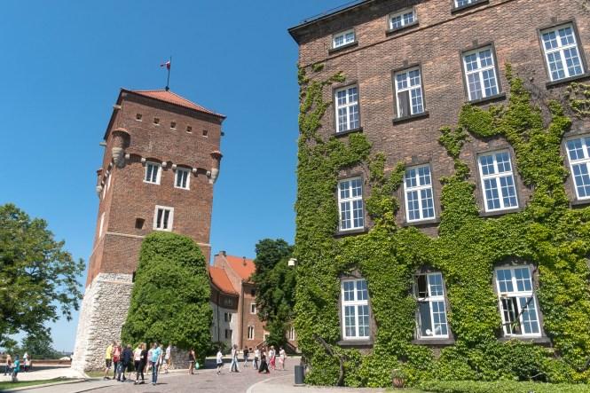 visiter-cracovie-château-du-Wawel