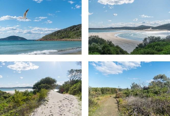Fingal Bay to Shark Island Port Stephens