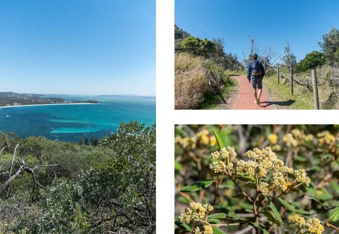 Mount Tomaree Port Stephens
