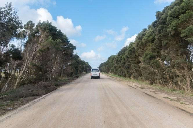 road trip en tasmanie itinéraire de 2 semaines
