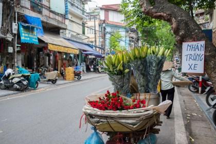 fleur Bach Ma temple visiter hanoi