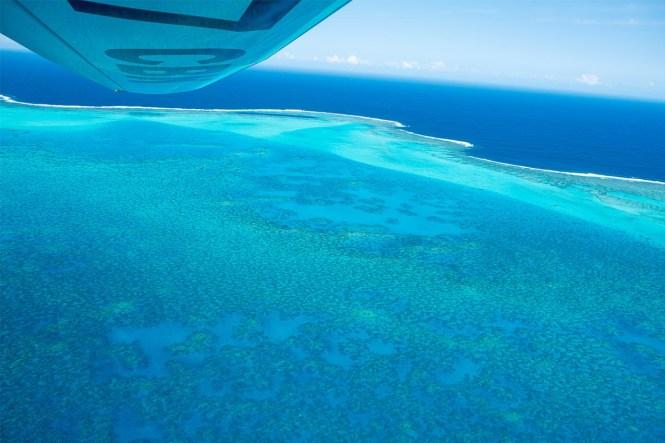 Grand-récif-de-Gatope-leopard-coeur-de-voh-ulm-leopard