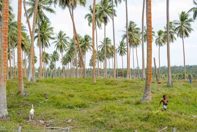 premiers-réfugiés-climatiques-Vanuatu-pays-le-plus-dangereux-du-Monde