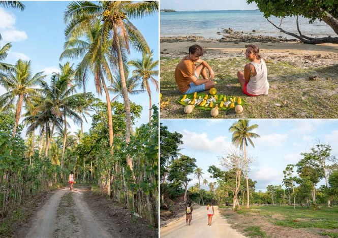 bush-walking-port-vila-vanuatu