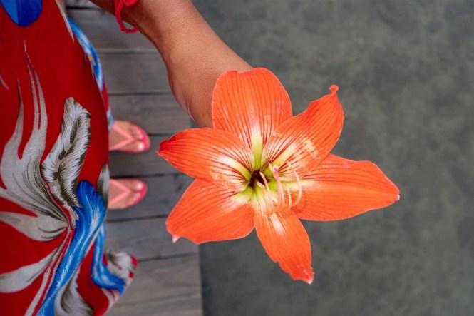 Fleur-Raiatea