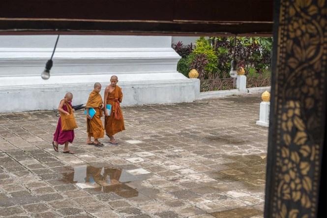 moines-Vat-Xieng-Thong-luang-prabang-laos