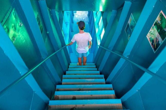 Observatoire-sous-marin-ponton-noumea