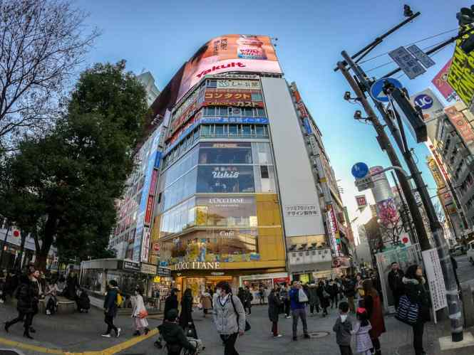 Tokyo-image-occitane-cafe