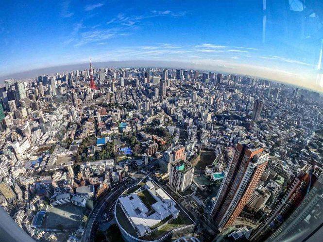 Tokyo-tower-vue-rooftop