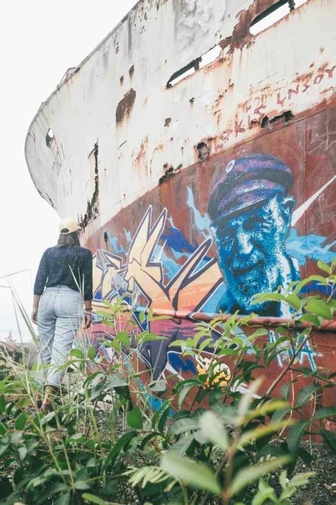 Calédonie-Toho-1-street-art