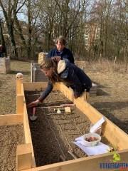 Jana und Uschi bringen die erste Direktsaat des Gartenjahres 2019 aus.