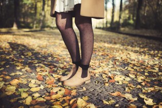 Detail Herbst Blaetter Beine Shooting Outdoor