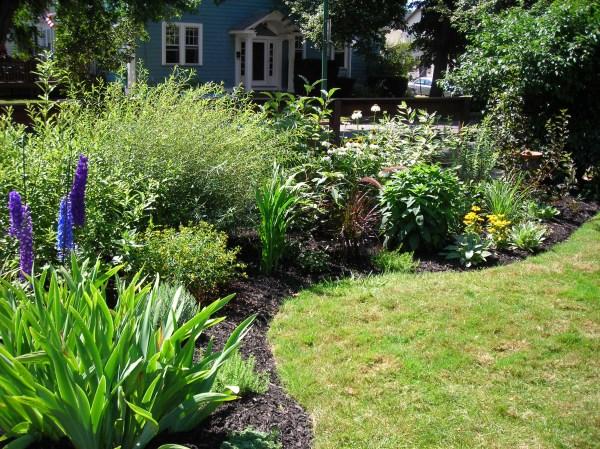 border garden privacy