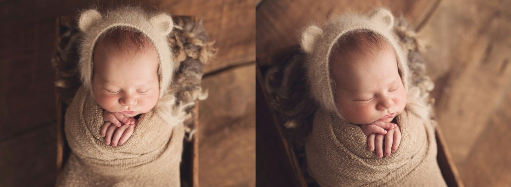 Ford Buffalo newborn photographer