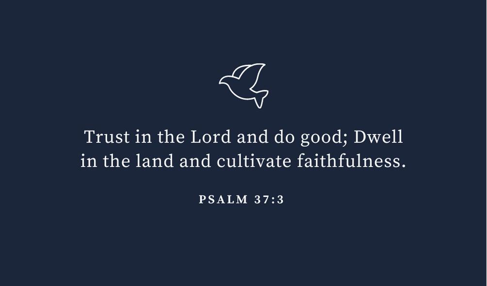trusting god bible verse psalm 37 vs 3