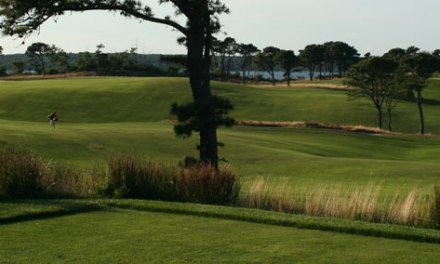 Monitor The Monotone: Native Grasses On Golf Courses