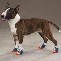 Shoes | Buff Broad