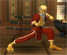 ninja sensei