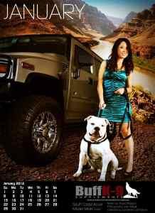 buffk9 american bulldog calender hummer h2