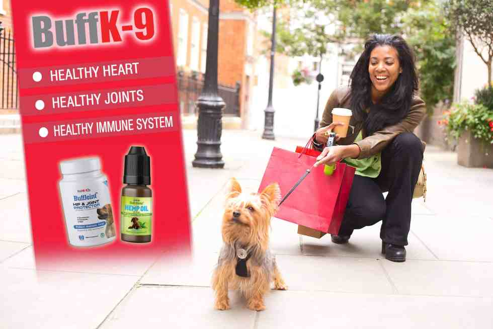 buff hemp oil for dogs accessories to buy