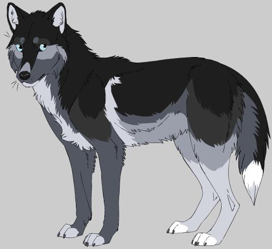 Maker And Wolf Animator Oc