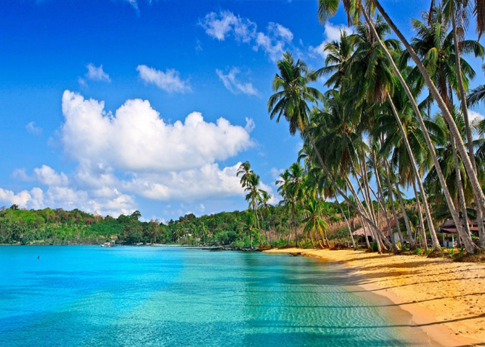 Read more about the article Reasons To Visit Andaman And Nicobar Islands