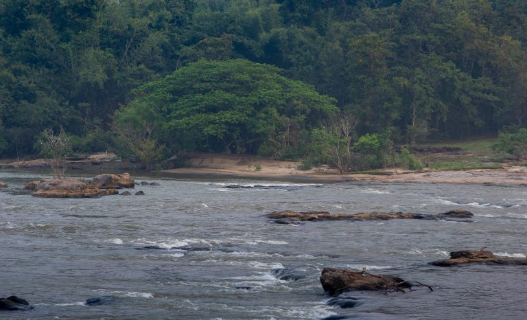 Quiet by the river, CGH Earth - riverside retreat- periyar river 4