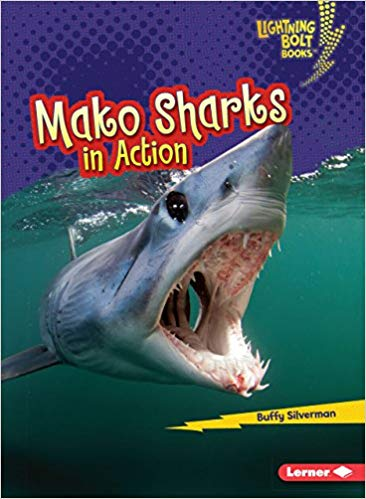 Mako Sharks in Action