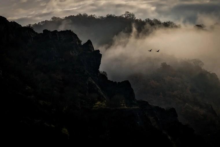 Noch heute bietet die Landschaft im Oberen Mittelrheintal Bilder wie zu Zeiten der Romantik. (Foto: Piel)