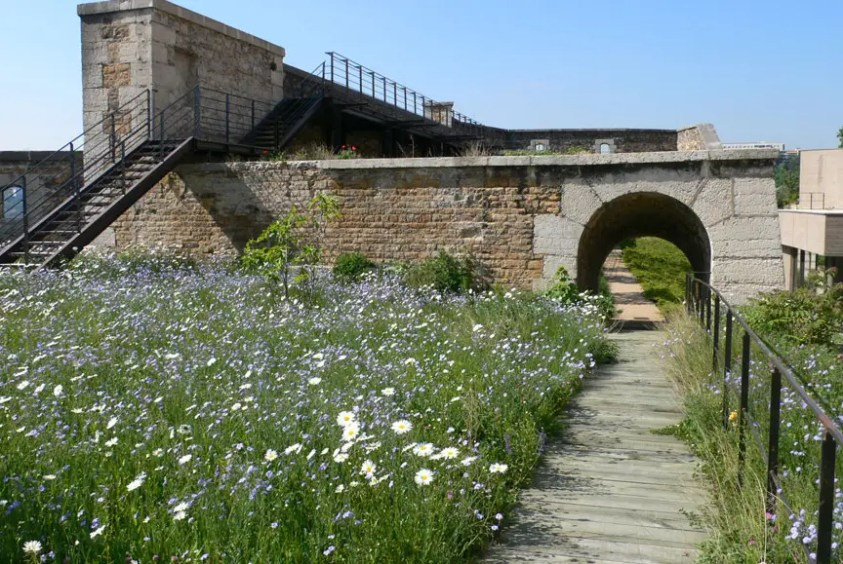 Fort Saint Jean, Lyon, Frankreich, In Situ Landscape Architects