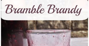 Preserving: How To Make Bramble Brandy