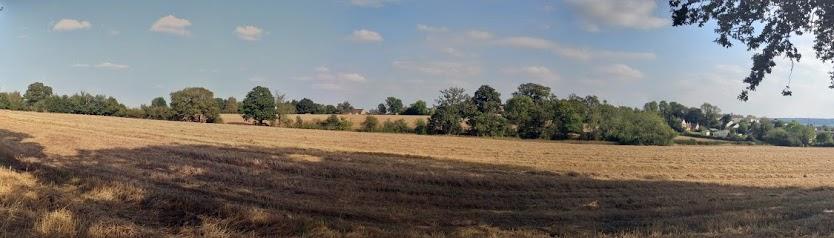 Bird's Marsh panoramic view September 2014
