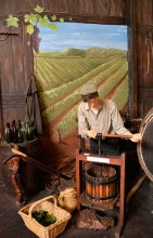 There was also a barrel making display and its amazing how so many other businesses benefitted from the Kauri Industry.
