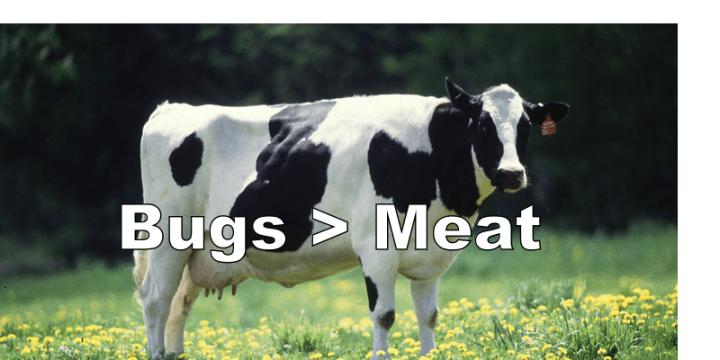 Meat, Meet Bugs