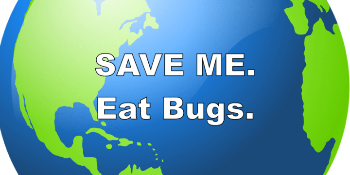 15 Reasons Why People Who Eat Insects Are Saving The World and Themselves