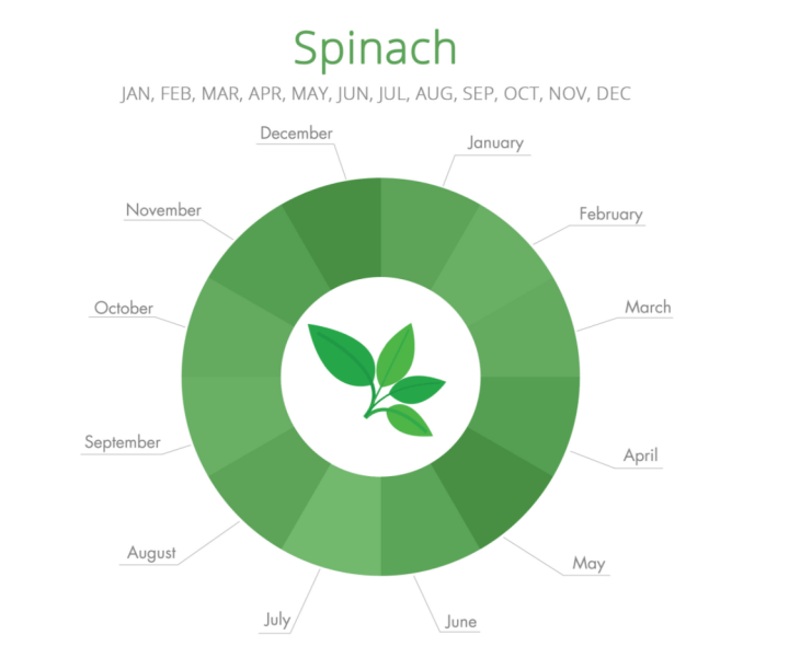 spinach_season.png
