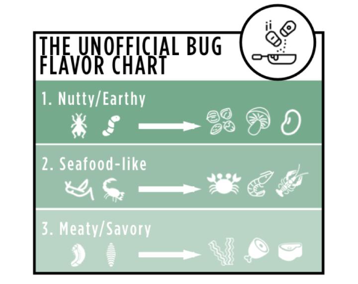 bug-taste.png