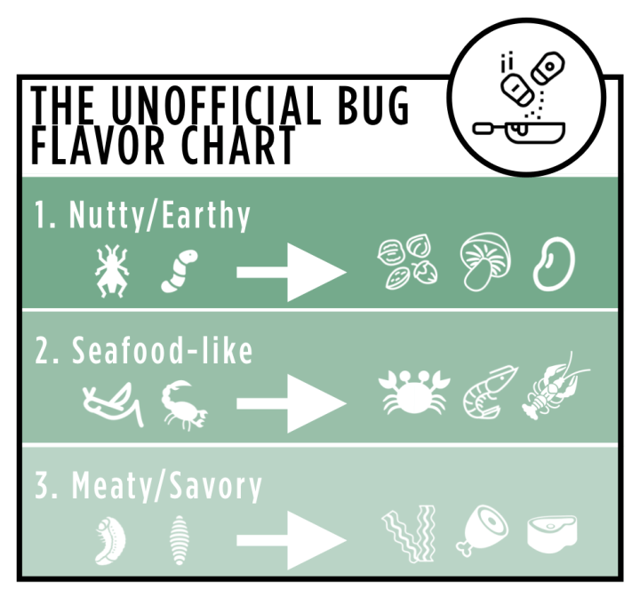 Bugible Flavor Chart