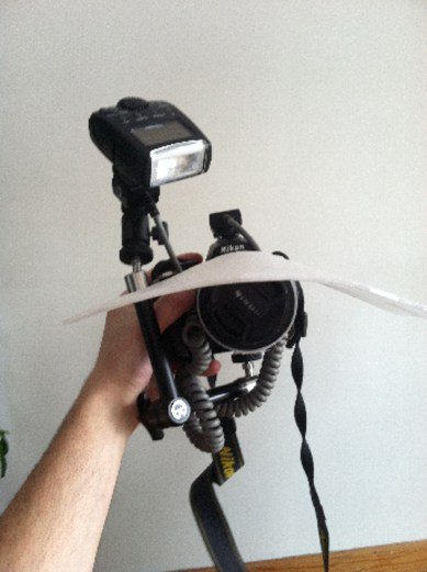 macro rig showing visor diffuser from the front
