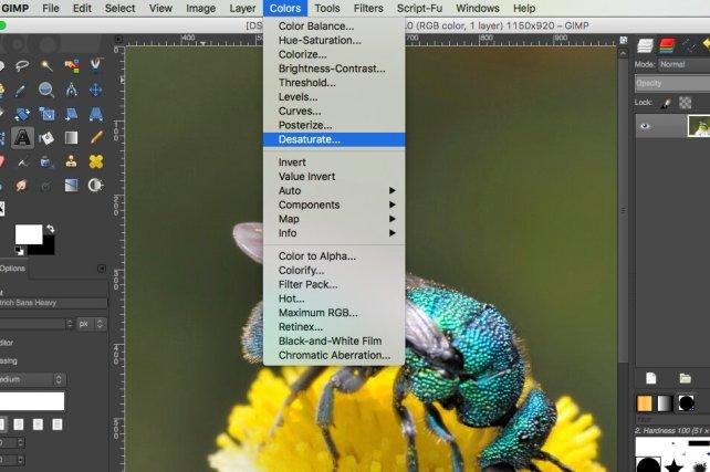 Desature in GIMP Mac