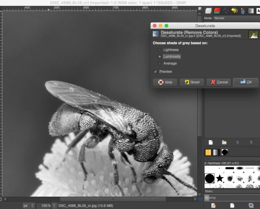 desaturate in GIMP