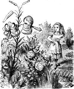 """Sir John Tenniel's drawing """"Alice in the Garden of Live Flowers"""""""
